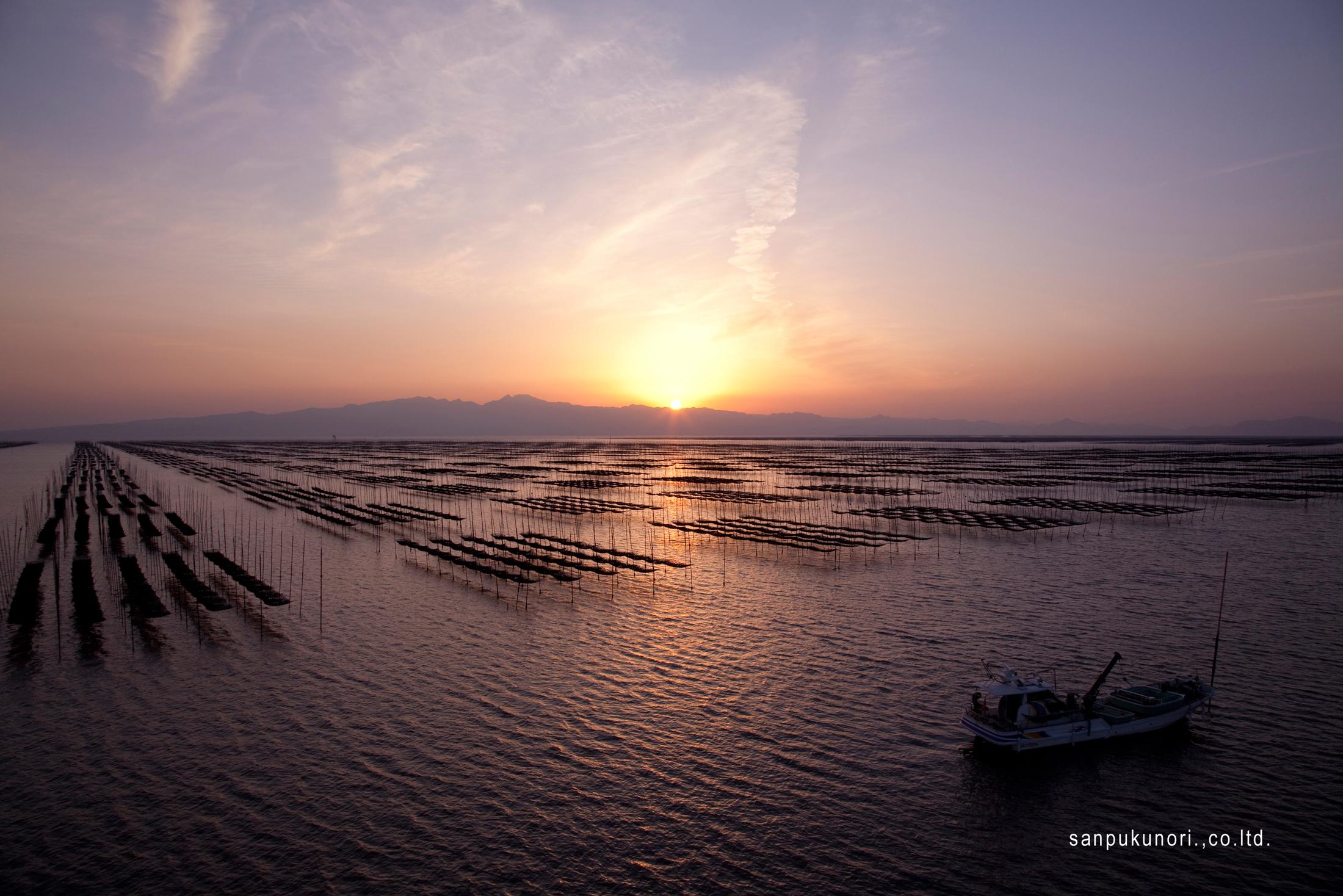 Premium nori from Japan's Ariake Sea